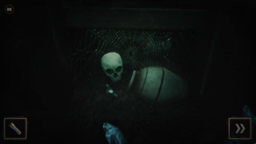 Dark Room Under stairs
