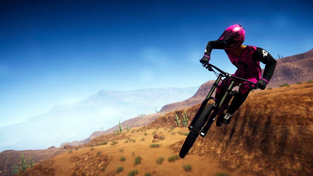 Descenders - Pink